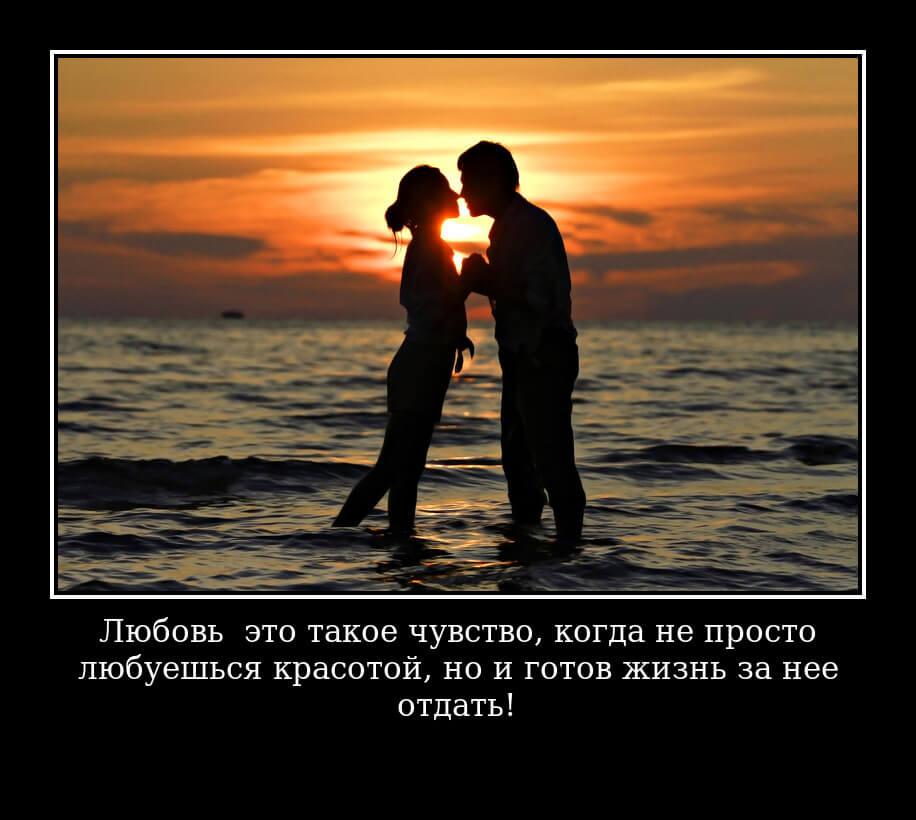 """На фото изображен статус """"Любовь — это такое чувство, когда не просто любуешься красотой, но и готов жизнь за нее отдать!""""."""