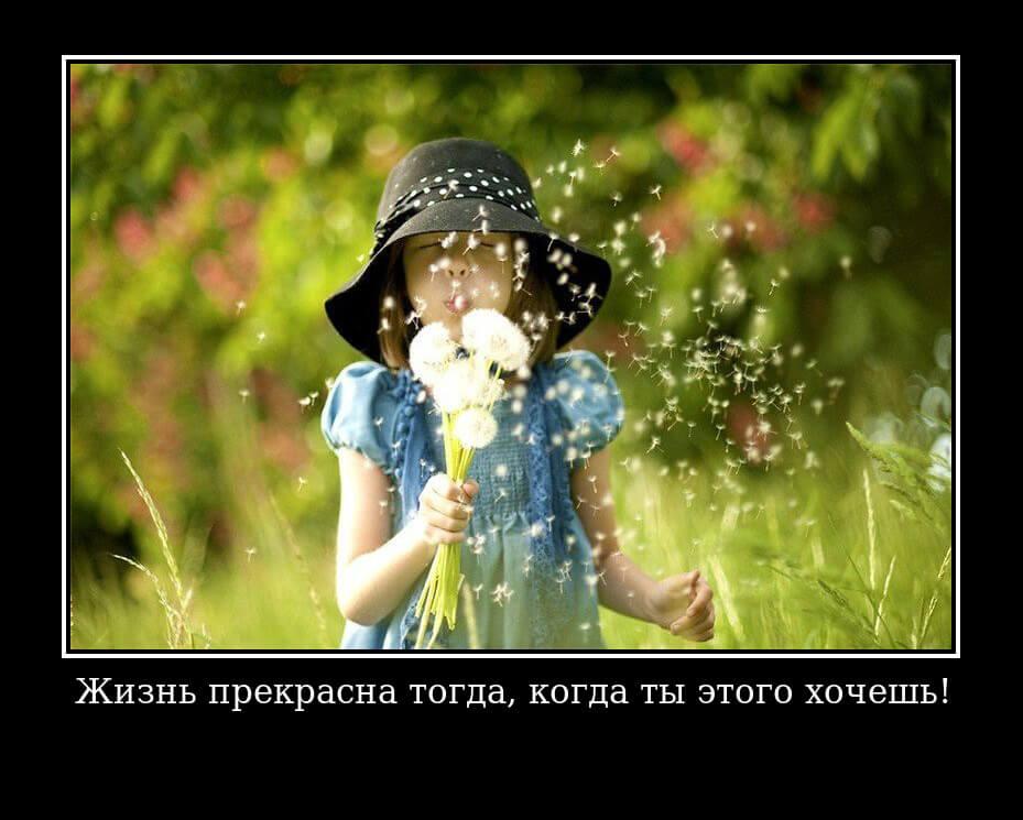 """На фото изображен статус """"Жизнь прекрасна тогда, когда ты этого хочешь""""."""