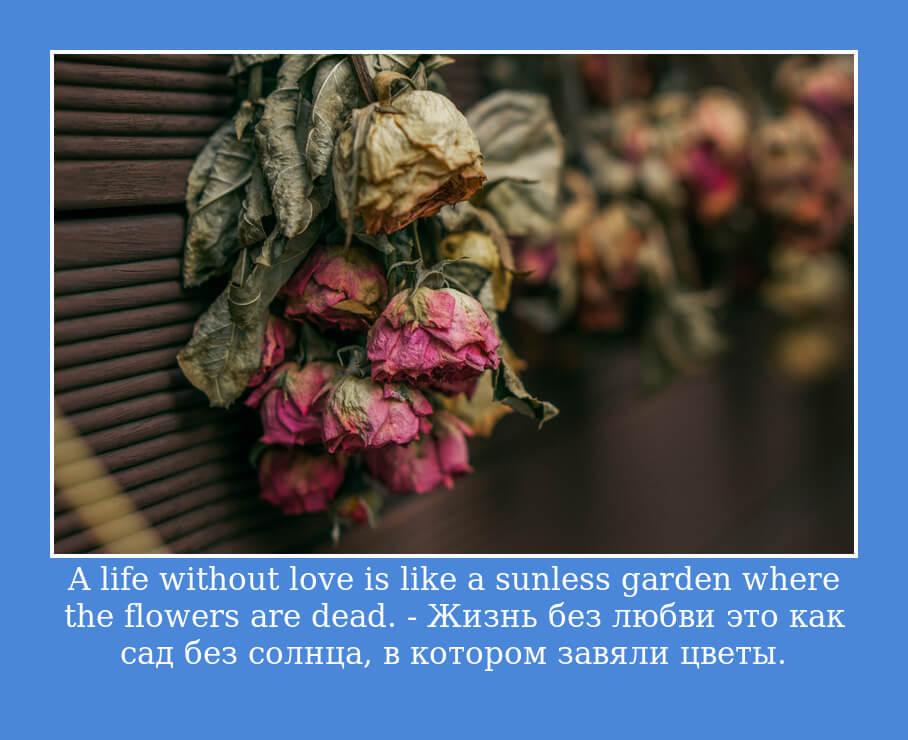 A life without love is like a sunless garden where the flowers are dead — Жизнь без любви это как сад без солнца, в котором завяли цветы.