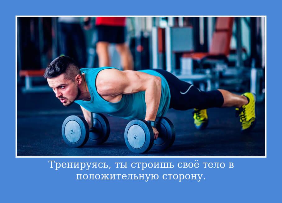 Тренируясь-ты строишь своё тело в положительную сторону.