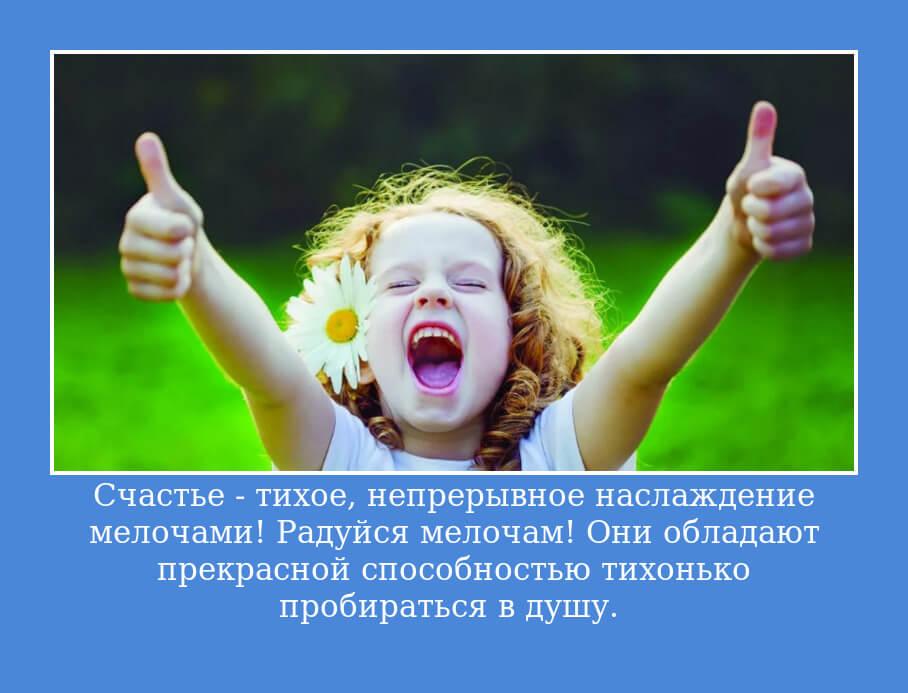Счастье - тихое, непрерывное наслаждение мелочами! Радуйся мелочам! Они обладают прекрасной способностью тихонько пробираться в душу.