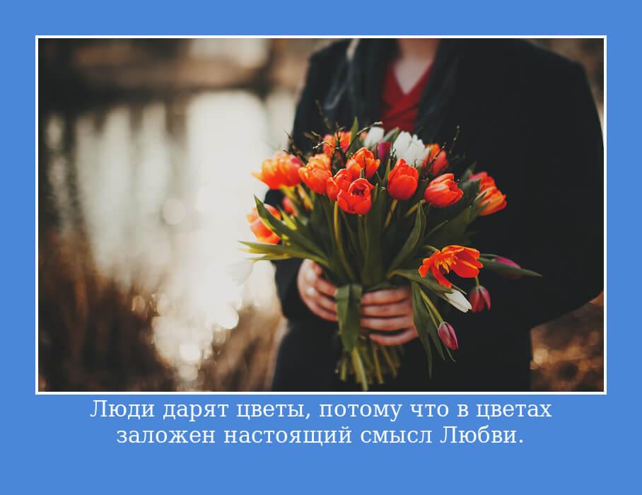 Люди дарят цветы, потому что в цветах заложен настоящий смысл Любви.