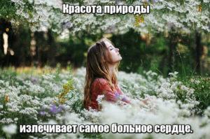 Красота природы излечивает самое больное сердце.