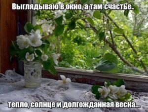 Выглядываю в окно, а там счастье.. тепло, солнце и долгожданная весна..