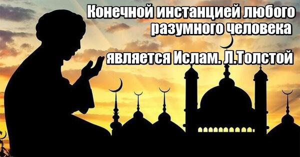 Конечной инстанцией любого разумного человека является Ислам. Л.Толстой