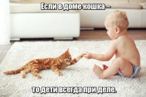 Если в доме кошка – то дети всегда при деле.