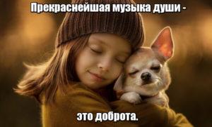 Прекраснейшая музыка души — это доброта.