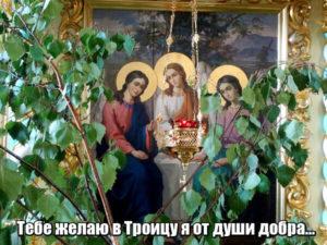 Тебе желаю в Троицу я от души добра...