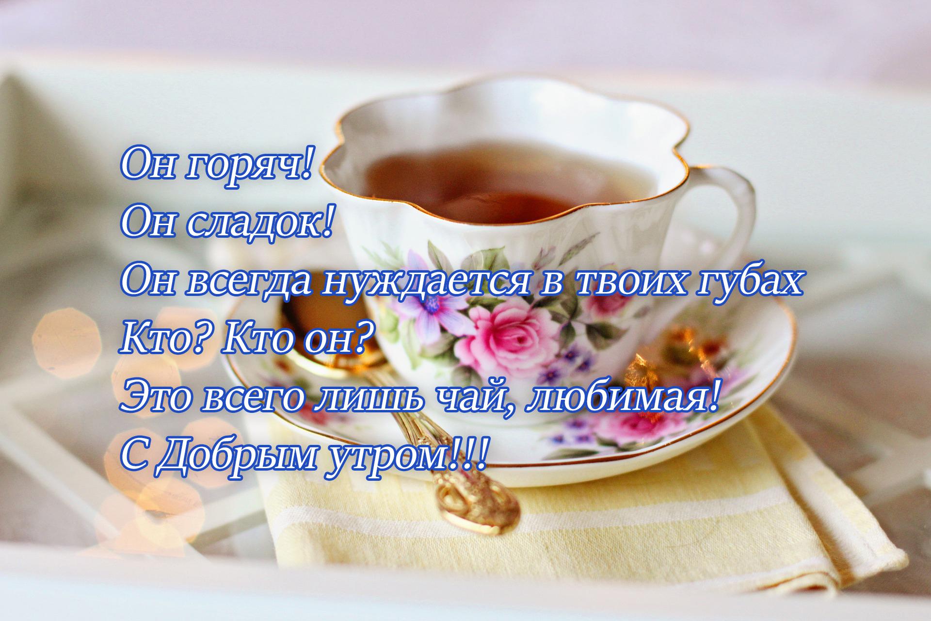 Он горяч, он сладок! Он всегда нуждается в твоих губах. Кто? Кто он? Это всего лишь чай, любимая! С Добрым утром!!!