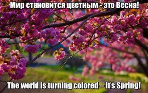 Мир становится цветным – это Весна! - The world is turning colored – it's Spring!