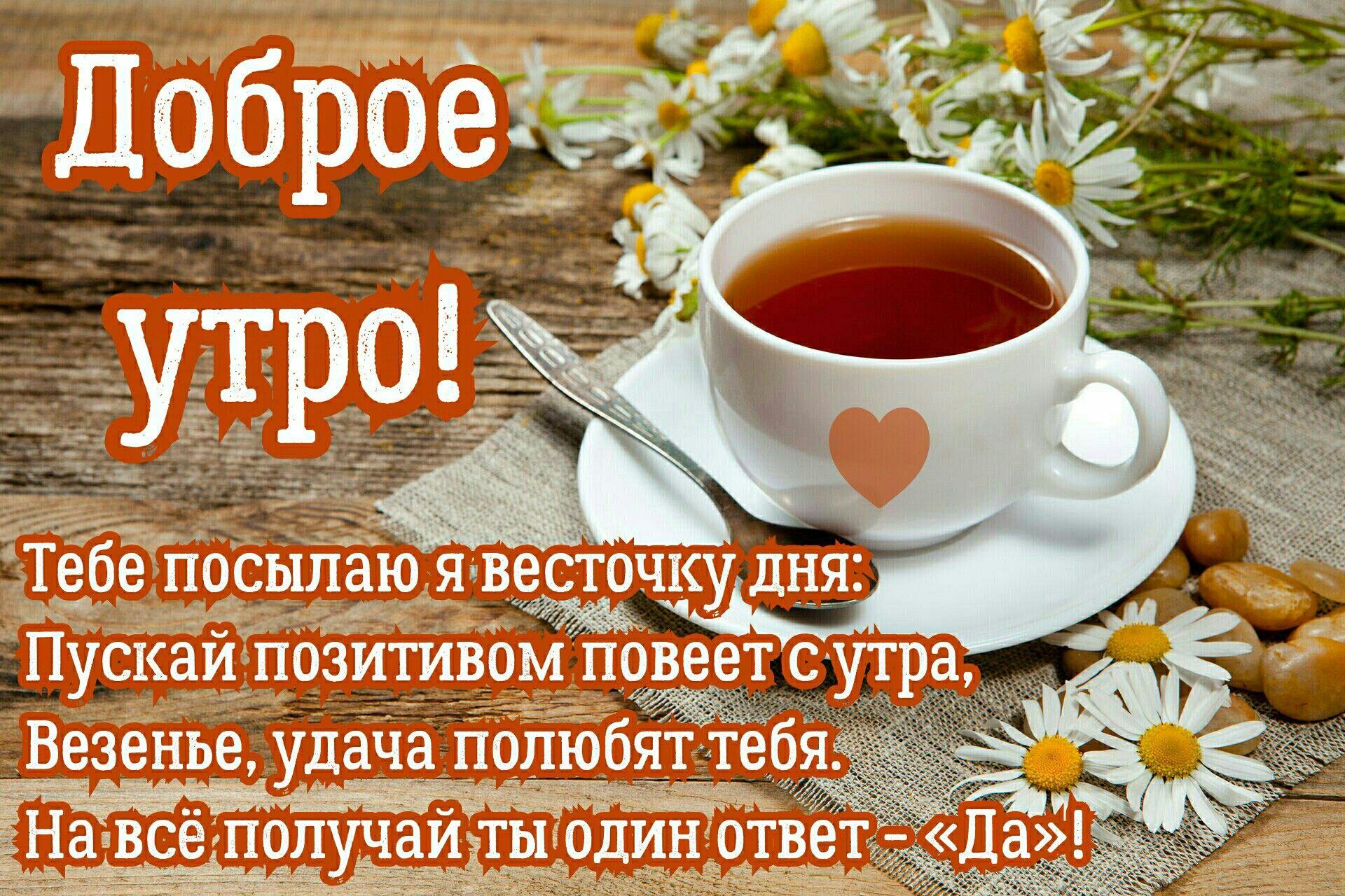 """Доброе утро!Тебе посылаю я весточку дня: пускай позитивом повеет с утра, везенье, удача полюбят тебя.На все получай ты один ответ - """"Да""""."""