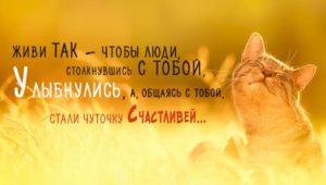 Живи так, чтобы люди столкнувшись с тобой, улыбнулись, а общаясь с тобой стали чуточку счастливей...