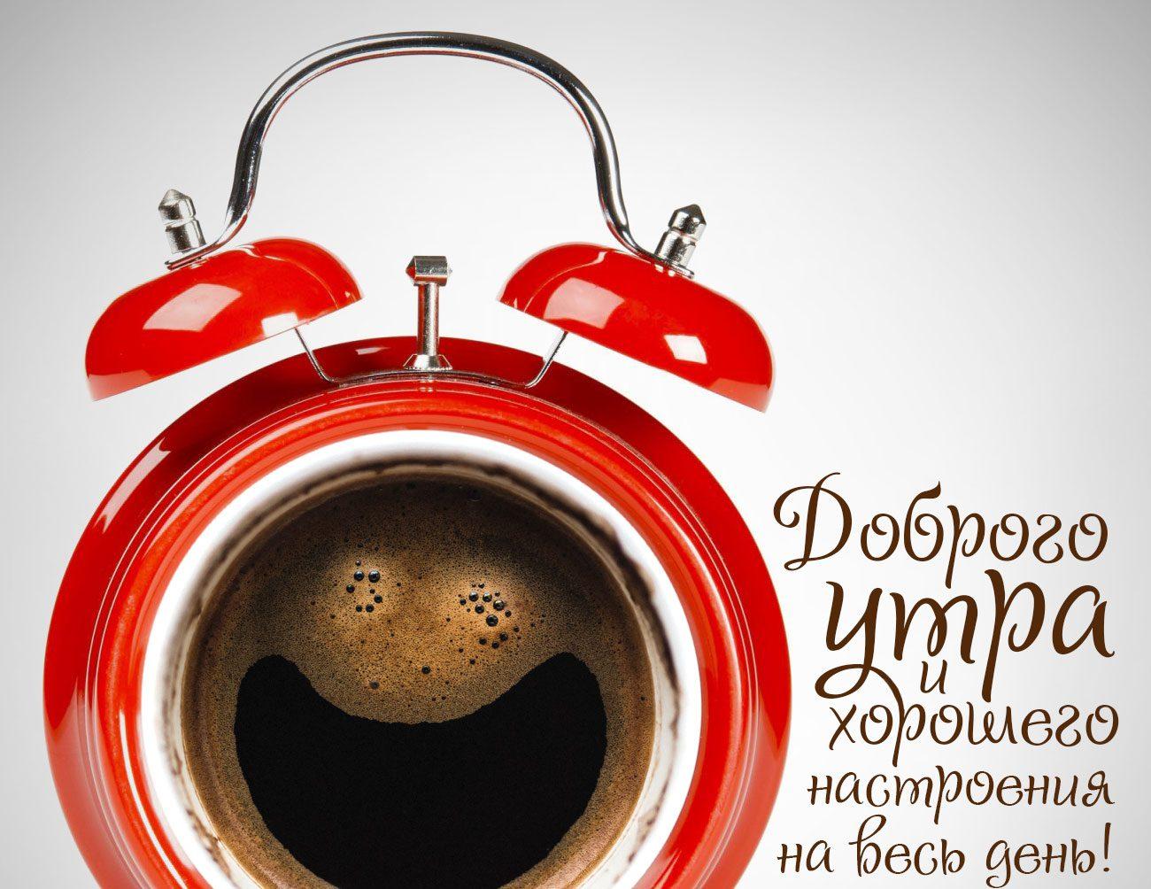 Доброго утра и хорошего настроения на весь день!