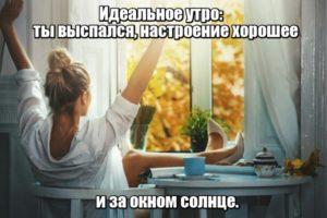 Идеальное утро: ты выспался, настроение хорошее и за окном солнце.