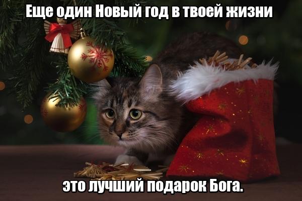 Еще один Новый год в твоей жизни — это лучший подарок Бога.