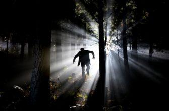 Парень в лесу. Где найти статусы про страх.