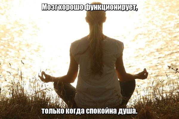 Мозг хорошо функционирует, только когда спокойна душа.